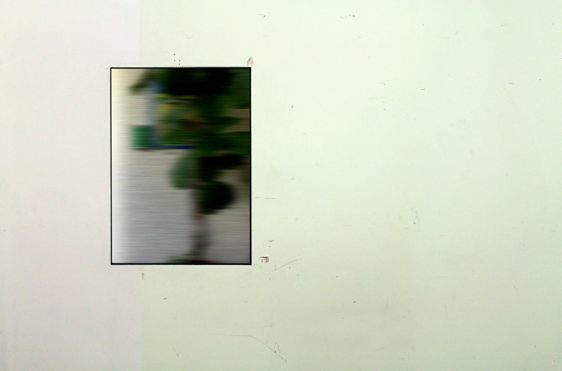 luca vanello Resting / Courtship